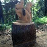 Eichhörnchen mit GPS