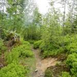 Hochälpele Wanderweg